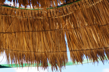 part of the umbrella roof from dry palm leaves and a peeled green metal rim
