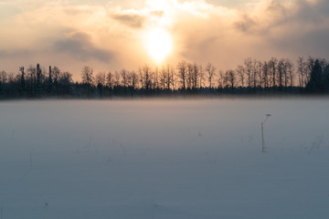 sunset against the background of a snowy field and trees in the distance