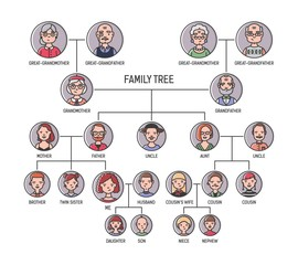 Family tree, pedigree or ancestry chart template. Cute men's and women's portraits in circular frames connected by lines. Links between relatives. Colorful vector illustration in lineart style.