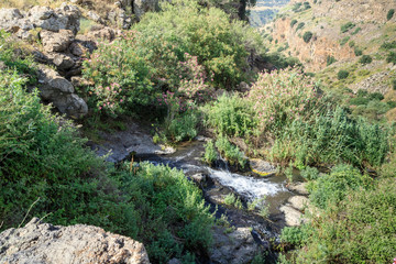 Stream Gamla  on the Golan Heights from which begins the largest waterfall in Israel