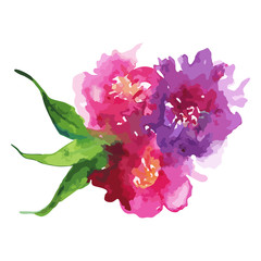 Watercolor pink purple flower floral peony rose carnation leaf boutonniere composition set isolated illustration vector