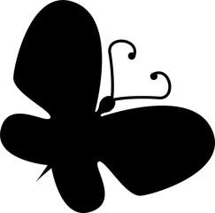 beatiful black butterfly