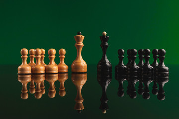 Chess figures on green background with reflection