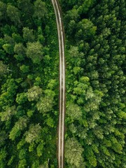 Fototapeten Wald Aerial top view of a country road through a fir forest in summer rural Finland
