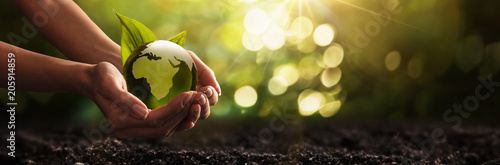 Wall mural Green Planet in Your Hands. Save Earth. Environment Concept