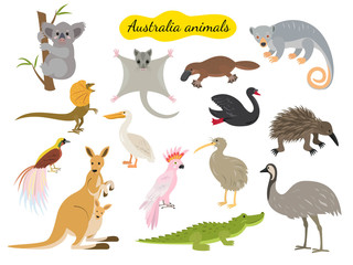Set of australia animals on white background.