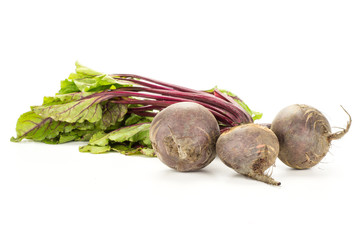 Red beet with greens isolated on white background three bulbs root with fresh young leaves.
