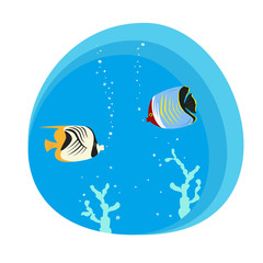 Tropical butterfly fishes on blue background.