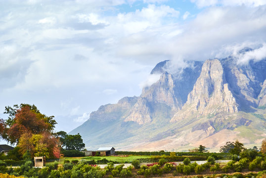 Vineyard mountains in Stellenbosch valley South-Africa