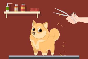 Grumer makes the dog a haircut. Vector illustration
