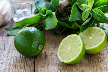 Ingredients for making  summer drink mojito
