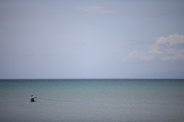 A fisherman pulls a net next to the shore in Cite Soleil, Port-au-Prince