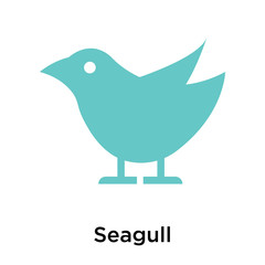 Seagull icon vector sign and symbol isolated on white background