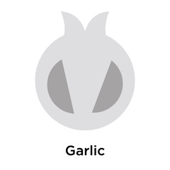 Garlic icon vector sign and symbol isolated on white background