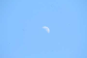 Mid Day Moon