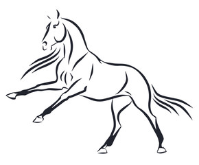A sketch of a raging horse
