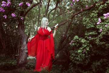 Portrait of a beautiful elf woman in a red dress in a fairy forest.