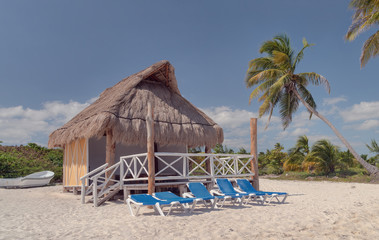 Thatched Roof Shack on a Beach