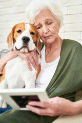 Portrait of sad senior woman holding photograph and remembering husband while sitting in comfortable armchair at home hugging dog