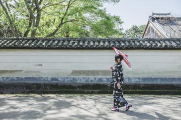 奈良公園を歩く着物女性
