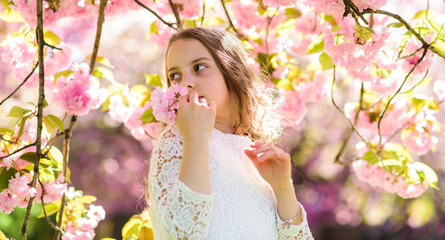 Girl on smiling face standing near sakura flowers, defocused. Girl with long hair outdoor, cherry blossom on background. Cute child enjoy aroma of sakura on spring day. Perfume and fragrance concept.