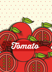 vegetable tomato on the dotted background vector illustration
