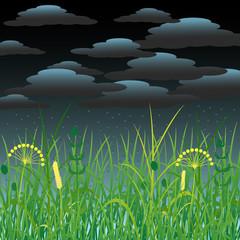 Concept Summer. Storm clouds, rain, herbs