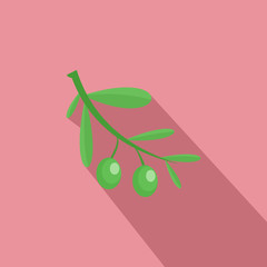 Branch of olives icon. Flat illustration of branch of olives vector icon for web design