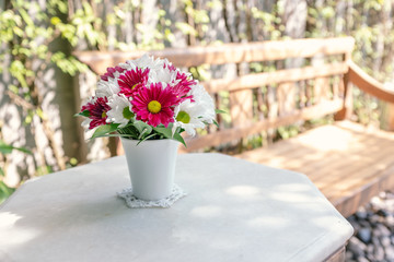 beautiful flowers in vest for backyard decorating on sunny day