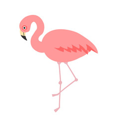 illustration of cute cartoon flamingo on white background