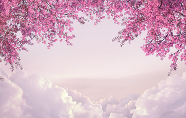 Cherry blossom frame composing wtih stack layer of cloud can use as background advertising