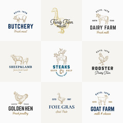Premium Quality Retro Cattle and Poultry Vector Signs or Logo Templates Set. Hand Drawn Vintage Domestic Animals and Birds Sketches with Classy Typography, Pig, Cow, Chicken, etc.