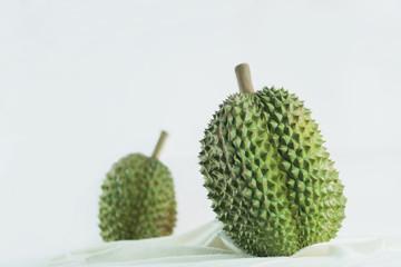 Illustration of durian fruit