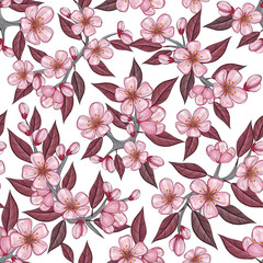 Cherry flower seamless pattern with pink flower and bordo leaf. Vector illustration for spring and summer background design