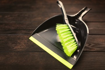 Brush and scoop