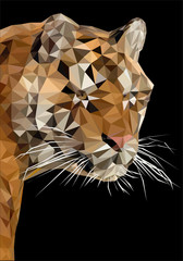 Tiger head polygon on black background vector illustration.