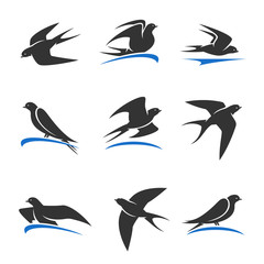 Martlet set. Vector bird