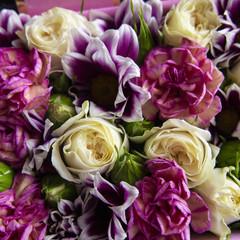 bright cut fresh flowers