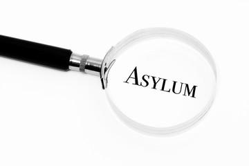 Asylum in the focus