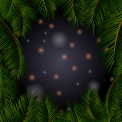 Night sky with stars in palm trees frame