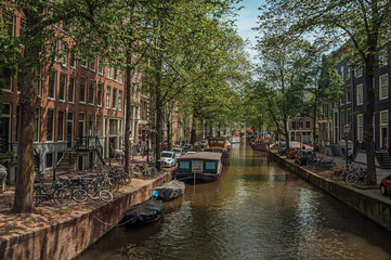 Boats moored at side of tree-lined canal, brick buildings and sunny blue sky in Amsterdam. The city is famous for its huge cultural activity, graceful canals and bridges. Northern Netherlands.