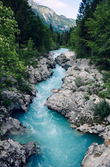 Photo sur Plexiglas Riviere Beautiful blue apline river Soca, popular outdoor destination, Soca Valley, Slovenia, Europe