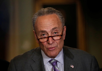 Senate Minority Leader Chuck Schumer (D-NY) speaks to members of the media during a news conference at the U.S. Capitol in Washington