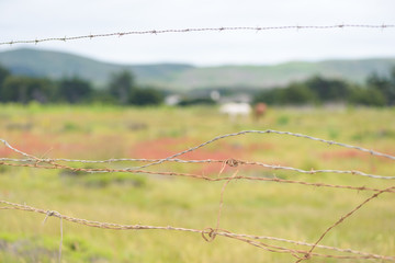 Close up of barbed wire fence on private ranch
