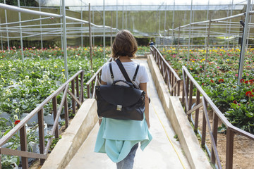 Young woman in greenhouse.Cameron highlands.Malaysia