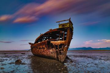 Garden Poster Shipwreck Janie Seddon ship wreck Abel Tasman New Zealand