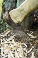 old axe is stuck in a stump, close-up abstract background