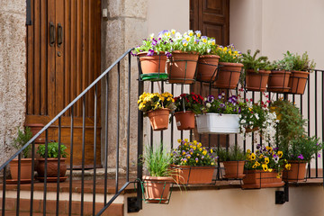 pots of flowers on the walls in a small village in Tuscany
