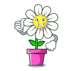 Thumbs up daisy flower character cartoon