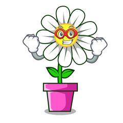 Super hero daisy flower character cartoon